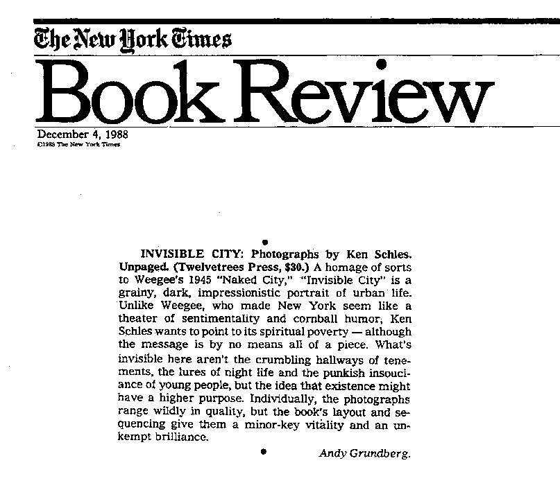 Professional book reviews new york times